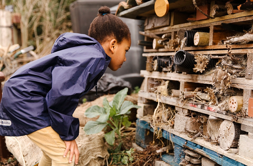 The Pros and Cons of Forest School