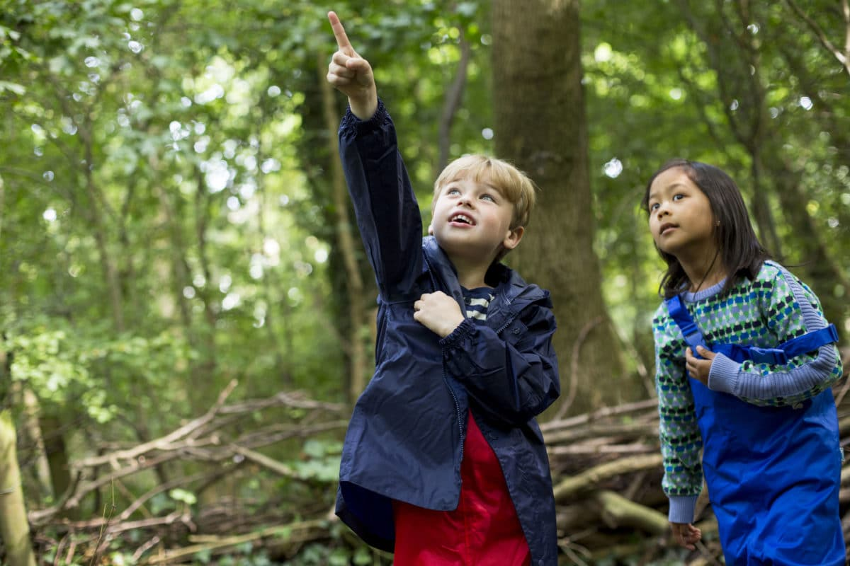 Forest School - typical day