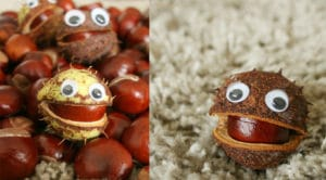 conker crafts for children