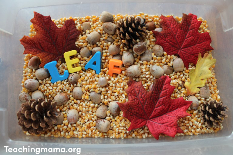teachingmama.org sensory box