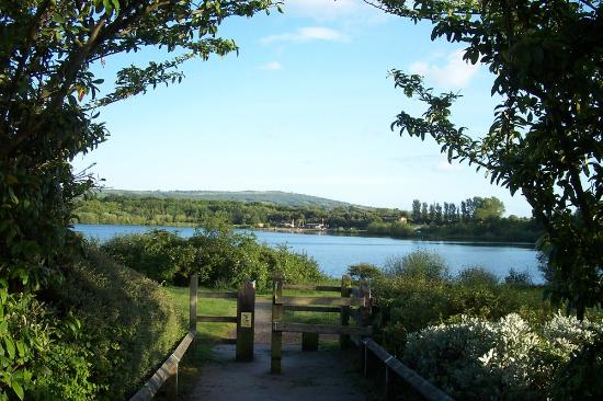 10 Best Country Parks Around the UK to Visit with Children